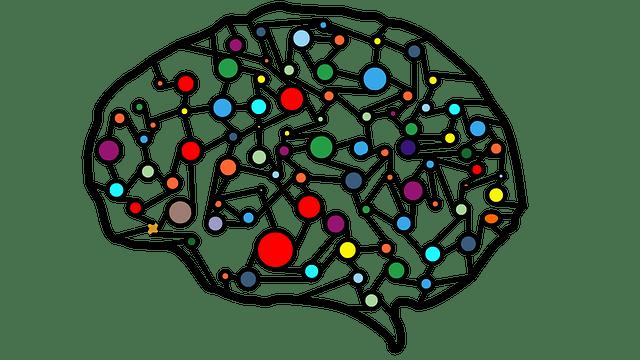 脳機能低下